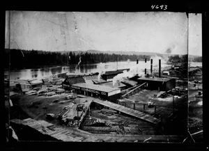 Bird's eye view of Grays Harbor Commercial Co. plant, circa 1910, #4693_1